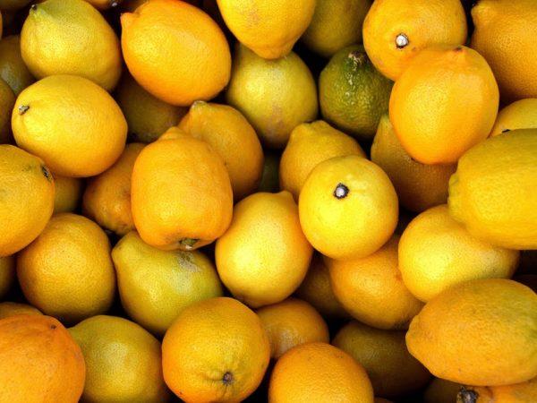 lemon-limon